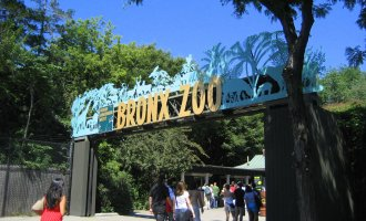New York- Bronx Zoo